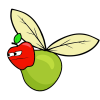 apple pear's Photo